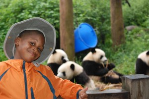 cam panda