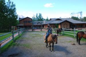 horse iphone