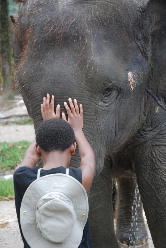 Ethan Elephant