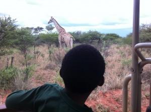 E+Giraffe