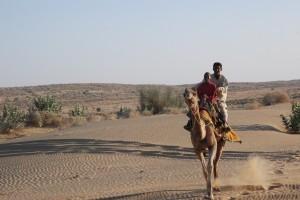 camel cam run