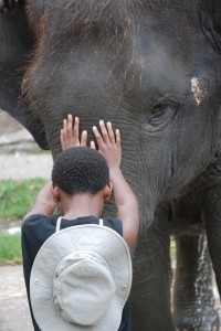 Here's me speaking to an elephant.