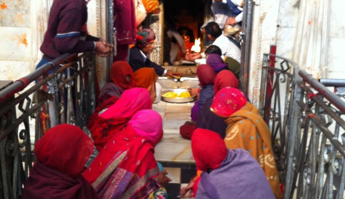 #GlobeTrotWed: Rat Temple, India