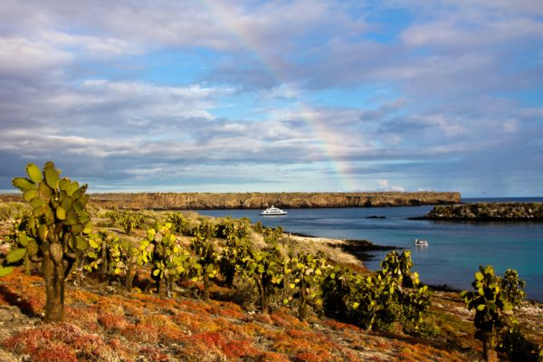 M/Y Letty and rainbow at South Plaza Island, Galapagos Islands, Ecuador.