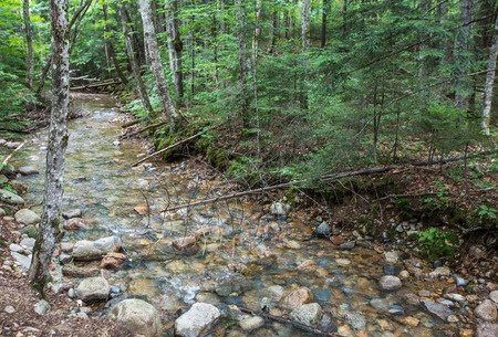The White Mountains in New Hampshire - part of our Travel Deals on GlobetrottingMama.com