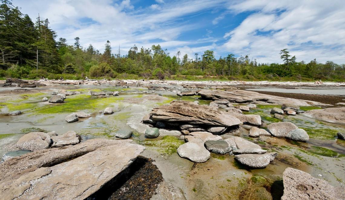 rocky beach, hornby island,vancouver island, canada