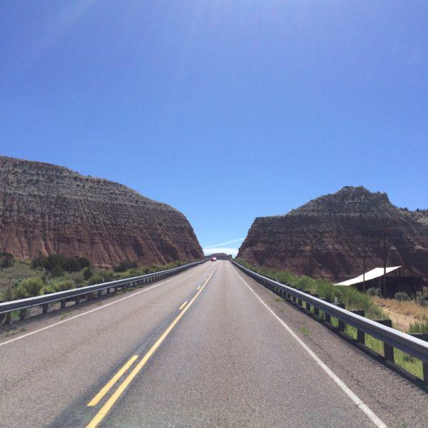 The Road Forward - COVID-19