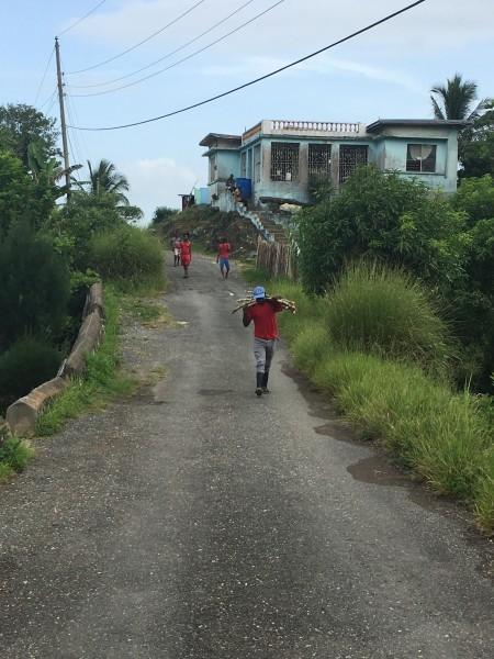 Jamaica grandma's house Generations